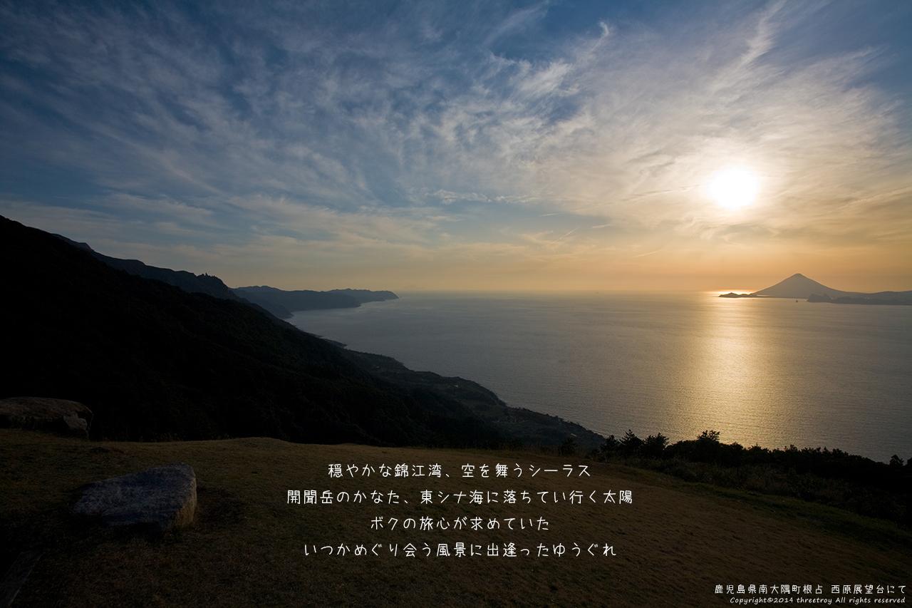http://www.threetroy.com/blogdata/ikku1280/IMG_4222.jpg
